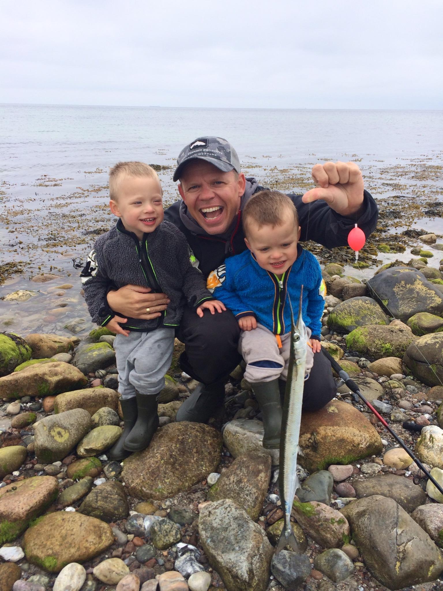 Hornfisk – Det er lige nu at de nye lystfiskere fødes…