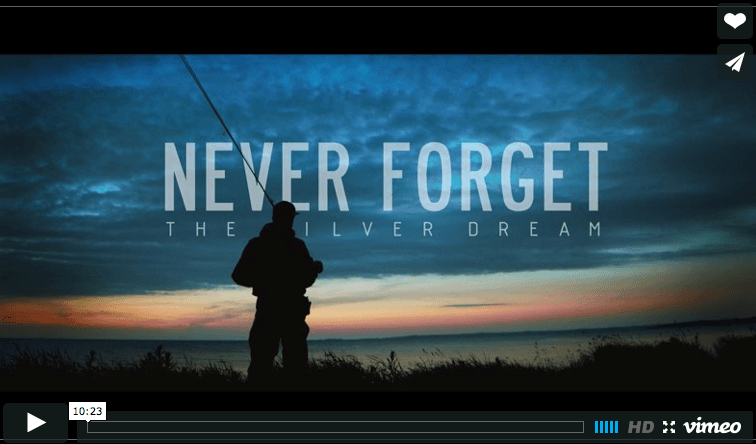 Never Forget – The Silver Dream
