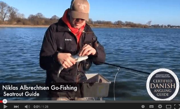 Fiskeriet i April -Det spiller max