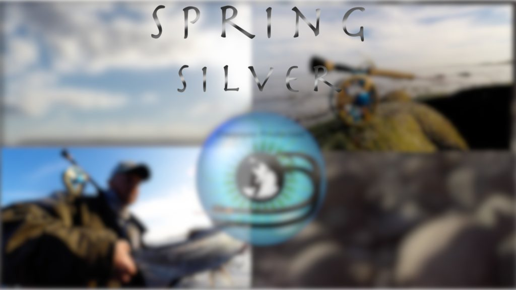 Spring silver cover