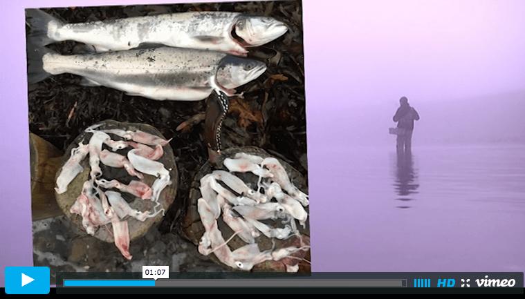 Skærmbillede 2015-11-27 kl. 22.13.18
