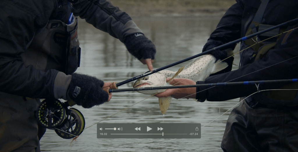 Sea Trout Battle 4 – Afslutningen