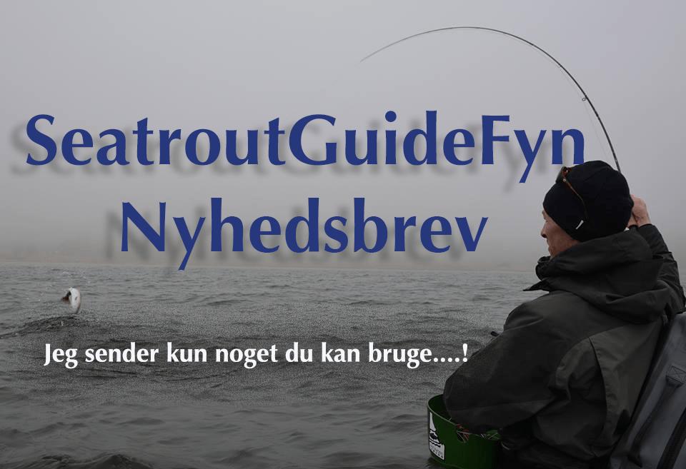 Seatrout Guide Fyn Nyhedsbrev