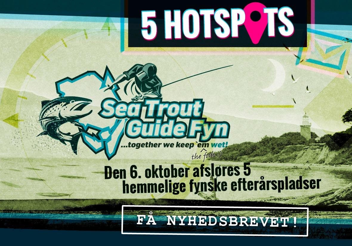 Få 5 hemmelige efterårspladser på Fyn til Havørreder