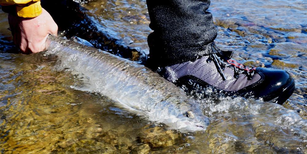 Kan vadestøvler holde til fiskeri ?