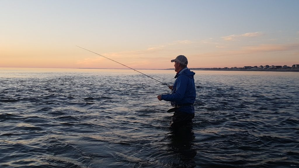 Vildt Cape Cod Fiskeri - Tropisk kystfiskeri
