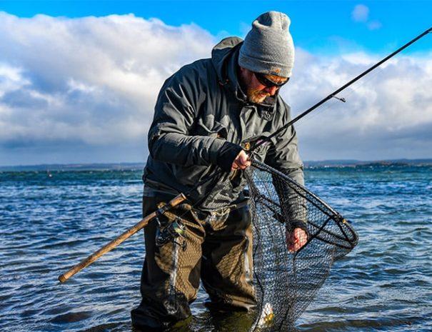 Fin fangst i nettet