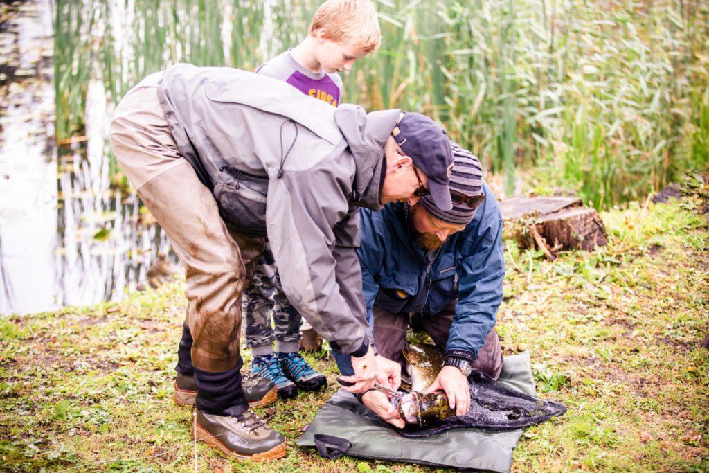 fisketurisme 378