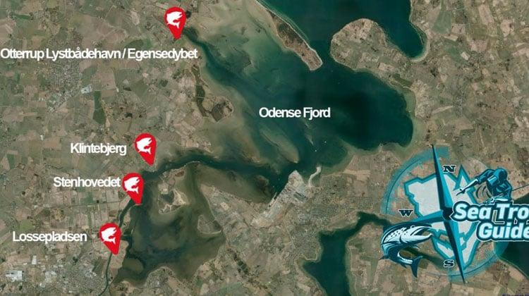 Kort over de bedste fiskepladser på vestsiden i Odense Fjord