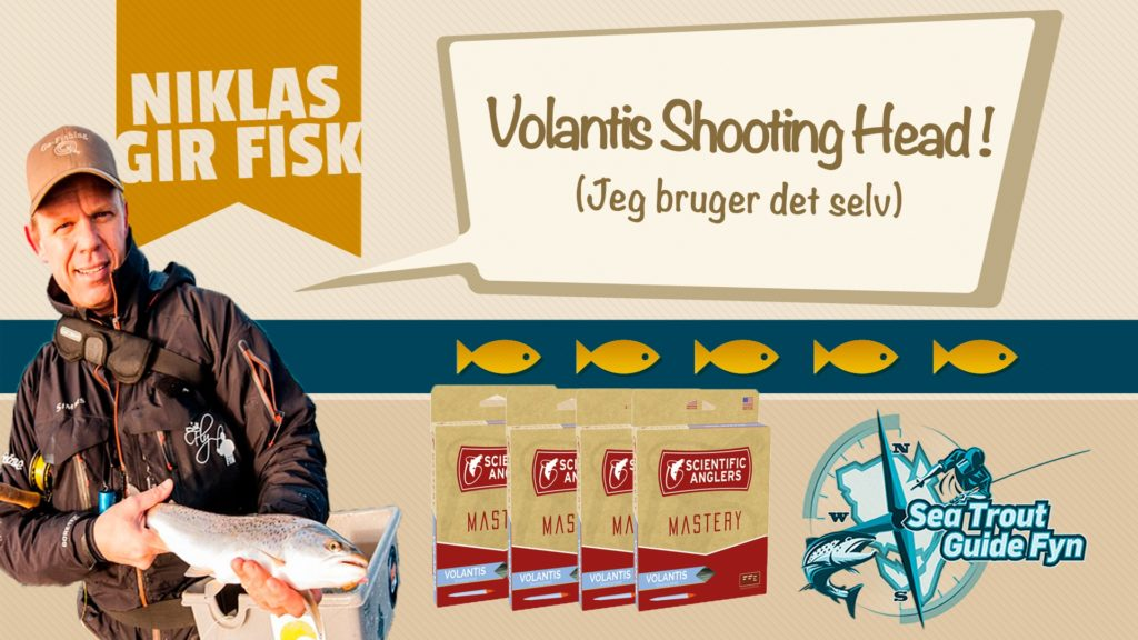 Volantis Shooting Head – Kyst Skydehoved fra Scientific Anglers