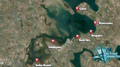 Kort over de bedste fiskepladser på østsiden i Odense Fjord