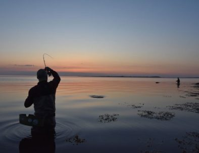 Natfiskeri når det er bedst