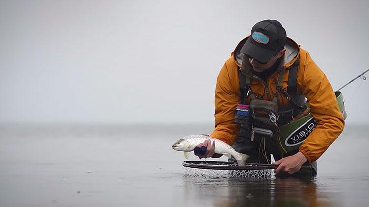 Fiskeri-eldorado på Æbelø