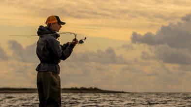fang mange flere fisk